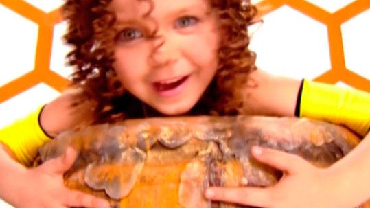 бджілка, гросу, grosu, аліна гросу, alina grosu, бджилка